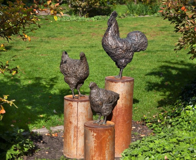 Høns i haven.