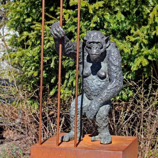 Elna Christiansens Abe i Københavns Zoo.