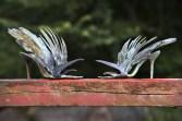 Fuglestiletter i samtale
