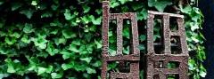 Rodian slide
