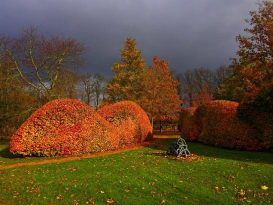 Efterår i Hollufgaards Park.